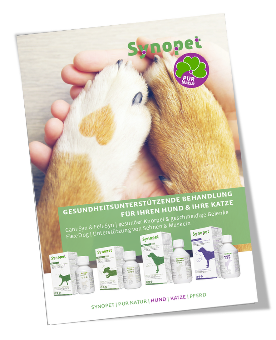 Synofit-Synopet-broschüre
