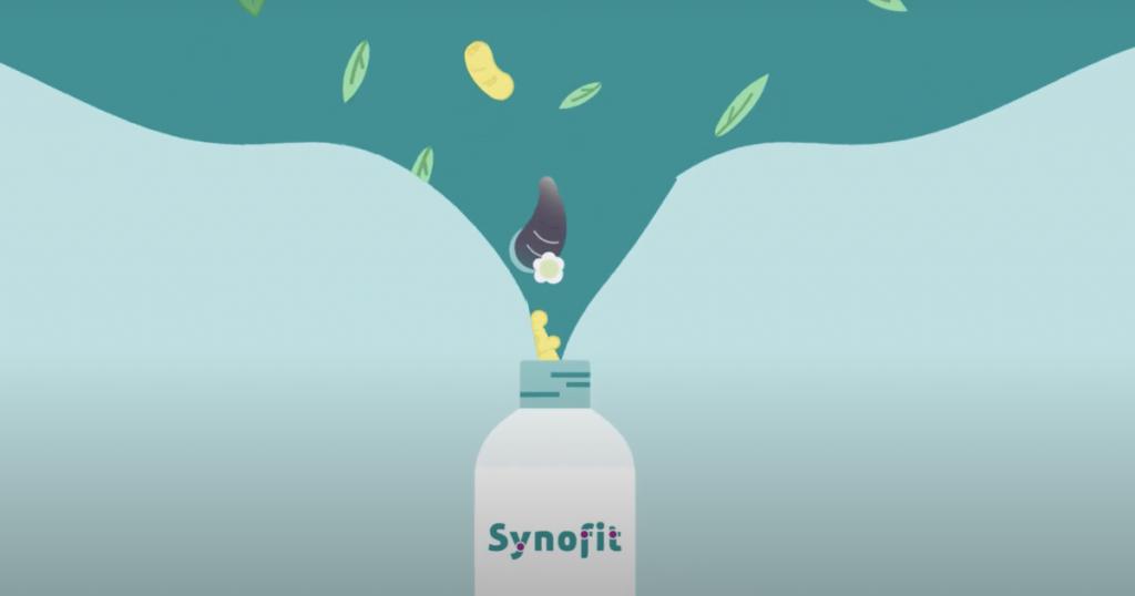 Synergie-inhaltsstoffe-Synofit