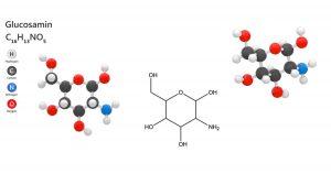 Glucosamin-Grünlippmuschel