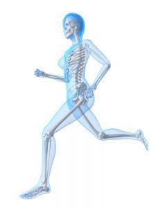 Knochen-aufbau-abbau-bewegung
