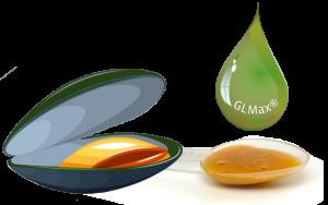 glucosamin-glmax-grünlippmuschel-synofit